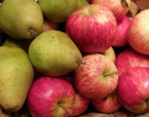 Es oficial la reapertura de la exportación de peras y manzanas a Brasil