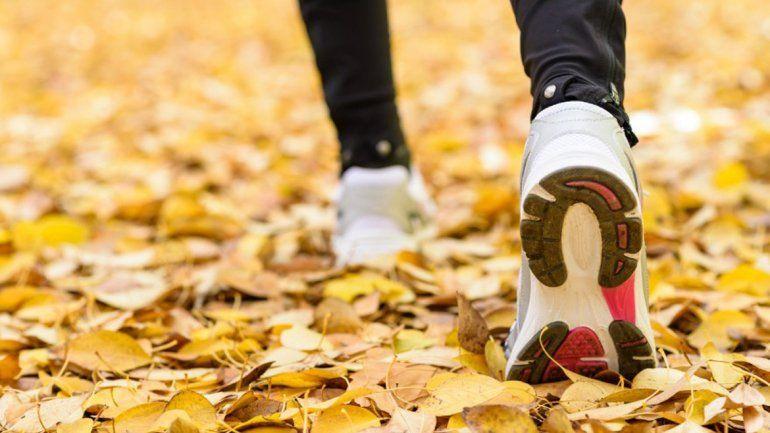 Contra la tradición, el otoño llegó este martes