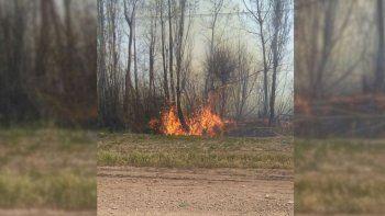 Los bomberos luchan contra un gran incendio en la ruta