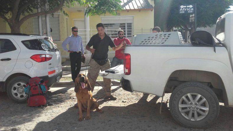 Investigan si Julieta Sánchez se fue a El Chocón