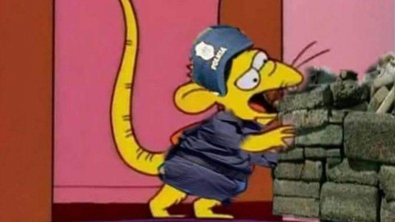Estallaron los memes por las supuestas ratas que comieron marihuana