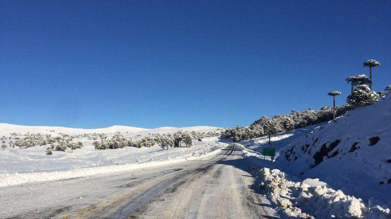 El paso Pino Hachado sigue cerrado por las condiciones climáticas
