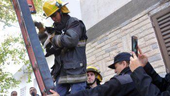 bomberos rescataron una gatita que no podia bajar de un arbol