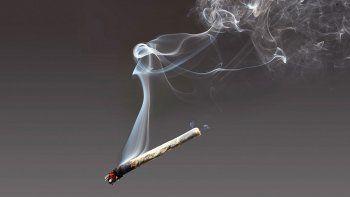 el consumo de marihuana no para de crecer en neuquen