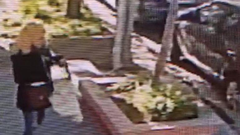 Pasó caminando, le gustó la planta de una casa y se la robó en Neuquén: quedó graba