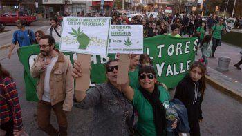 cipolletti seran parte de la marcha nacional por la marihuana