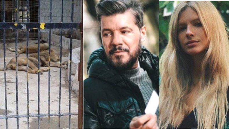 Famosos desesperados por el abandono de los animales en el Zoo de Santiago del Estero: Los están dejando morir! copy