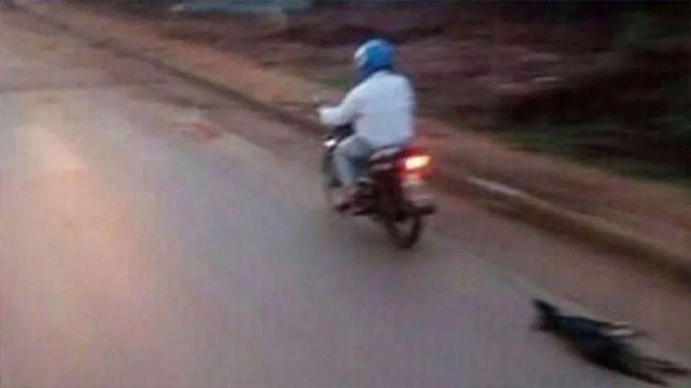 Crueldad sin límites: ató a un perro a la moto y lo arrastró hasta matarlo