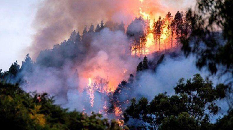 Incendios en el Amazonas: denuncian que más de un millón de indígenas están en peligro