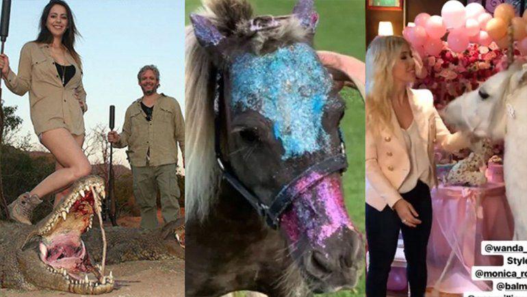 Maltrato animal VIP: De los ponys de Wanda y Blaquier, a las poses de Vannucci y Garfunkel con sus presas