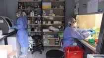 neuquen sumo dos nuevas muertes y 35 casos de coronavirus