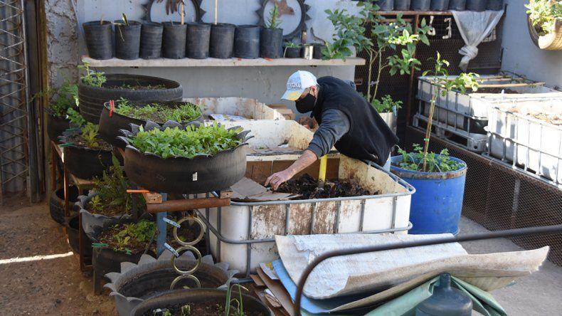 Transformar basura en naturaleza, la magia de hacer compost