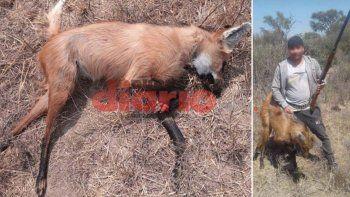 Van presos por cazar una aguará guazú y compartir las fotos