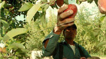 UATRE comenzará la paritaria de cosecha el 5 de enero