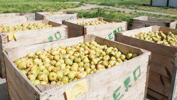 Buscarán impulsar un esquema especial para los productores