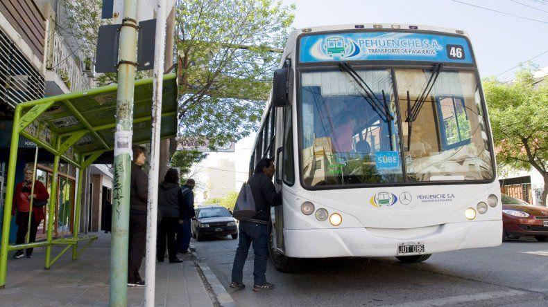 Pehuenche suma ocho colectivos al servicio urbano