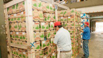 El último embarque a China partió hace una semana, con más de 100 mil kilos de fruta fresca.