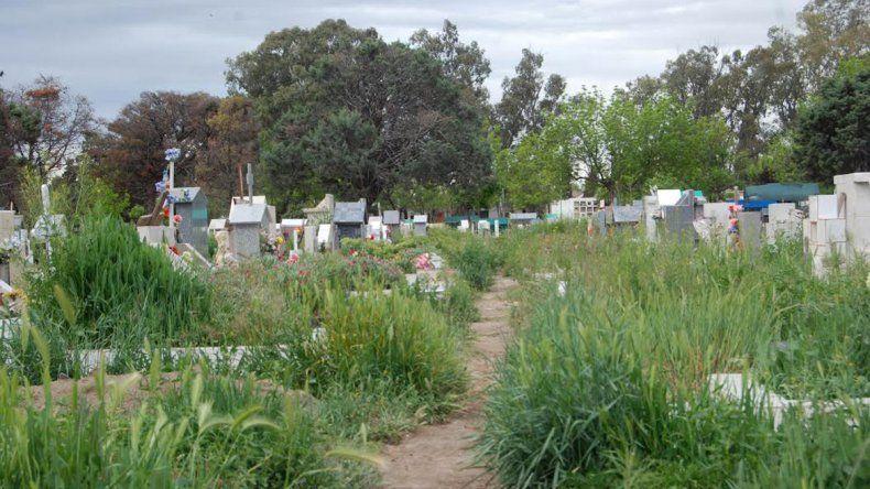 En el cementerio proliferan yuyos