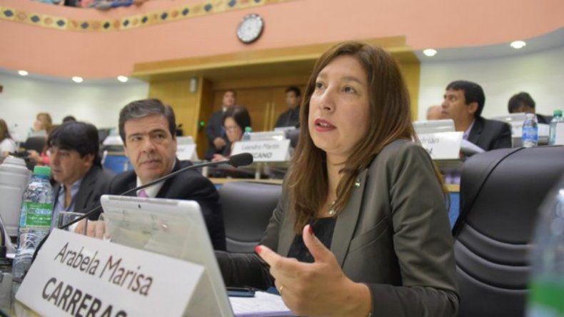 Carreras defendió la iniciativa del Ejecutivo en el recinto.