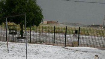 Un temporal de granizo arrasó con la producción del Valle Medio