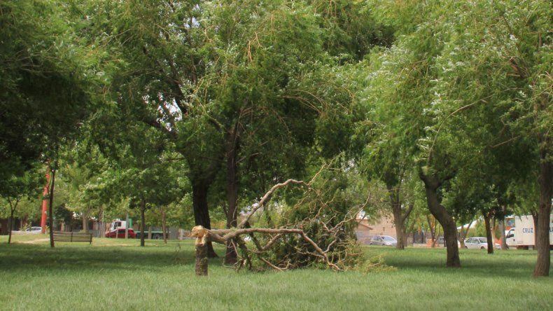 Los cipoleños padecieron ayer las intensas ráfagas de viento durante toda la jornada