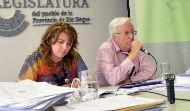 Para Pandolfi no están dadas las condiciones para la Reforma Penal