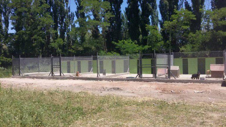Los nuevos caniles están ubicados en un predio ubicado en La Falda.