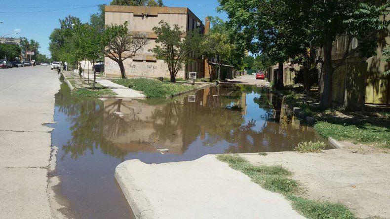 Laguna maloliente por desborde cloacal en las 400 viviendas