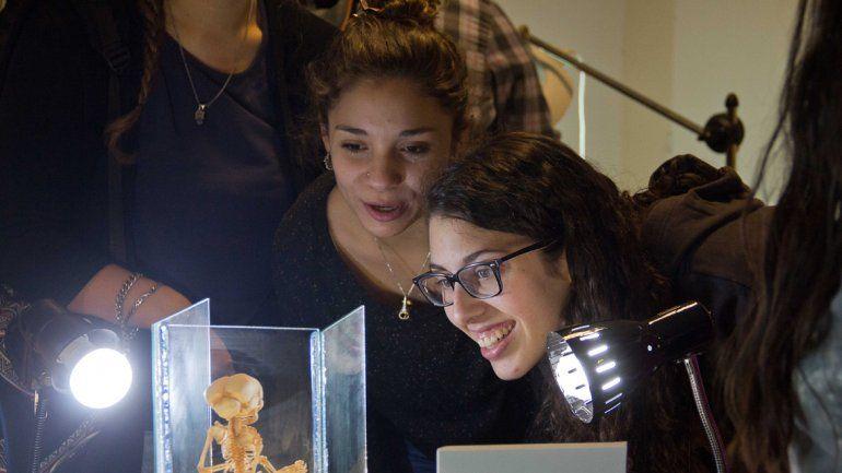 La muestra se realizó en la sede de la Facultad de Medicina de calle Toschi.