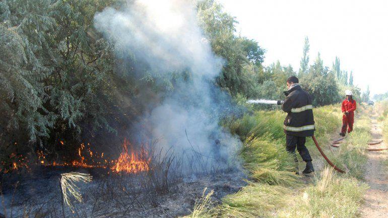 Fuego y humo por quema de pasto descontrolada