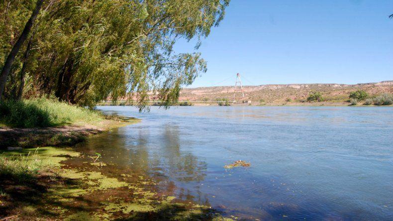 La Isla Jordán es uno de los puntos críticos del río Negro.