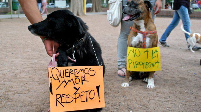 Los proteccionistas de animales fueron los impulsores del veto a la pirotecnia. Buscaban la prohibición total.