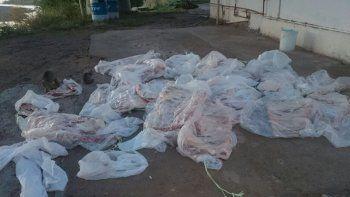 Decomisaron 300 kilos de carne con hueso sobre la Ruta 151