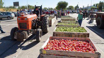 La fruticultura viene en declive hace muchos años y, pese a las numerosas protestas, las soluciones no aparecen.