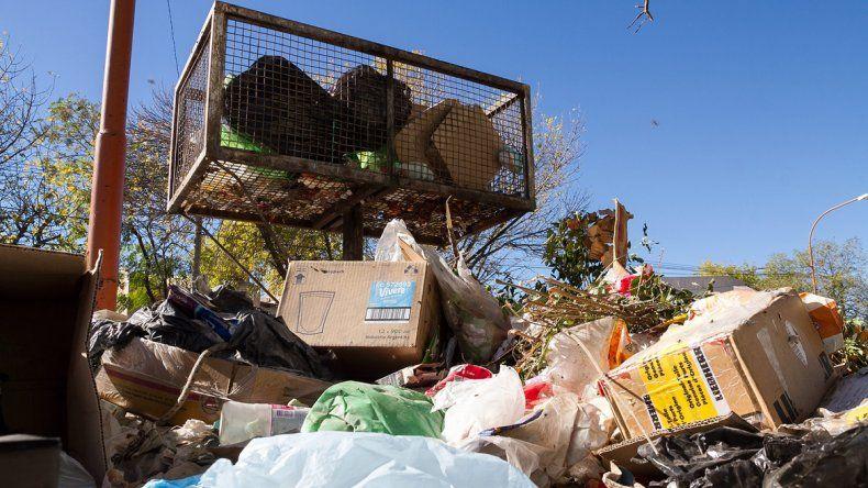 Piden no sacar la basura por suspensión del servicio de recolección