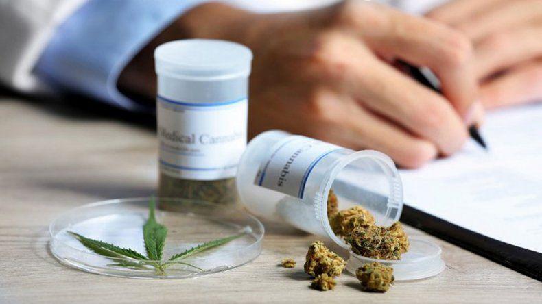 Se viene el segundo encuentro sobre cannabis medicinal