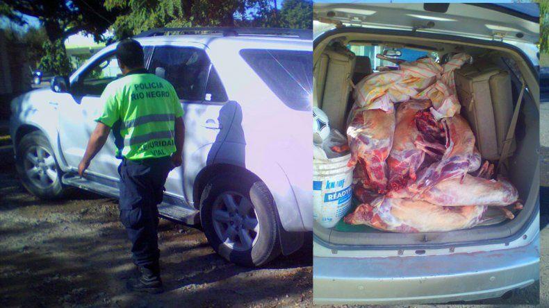 Atraparon a un comerciante con 20 chivitos en el interior de la camioneta