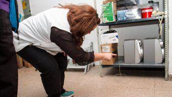 En la Primaria 258 descubrieron excrementos de roedores en distintos sectores del edificio.