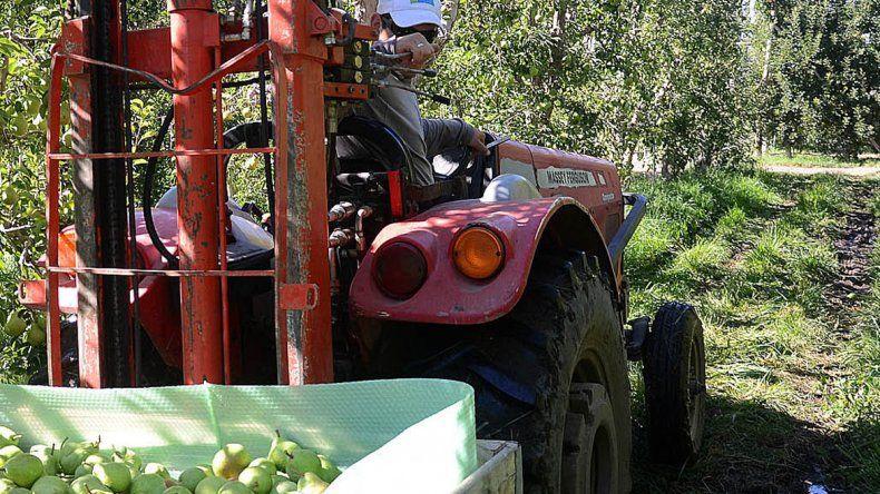 Caen los ingresos provenientes de la fruticultura