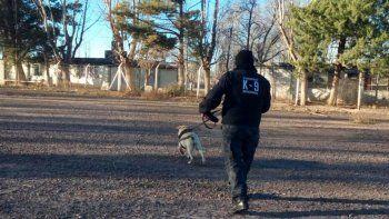 El cuerpo hallado podría ser del abuelo desaparecido hace 3 meses