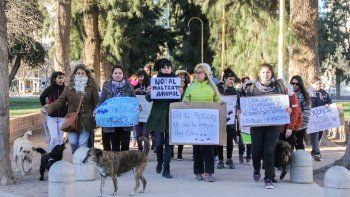 Las mascoteras exigen un mayor compromiso del Municipio con los perros.