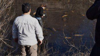 llaman a reunion urgente por la situacion del rio en allen