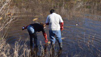 Un vecino filmó a los peces flotando en el río y el video se viralizó rápidamente.