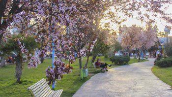 bienvenida primavera: ¿como estara el tiempo en la region?