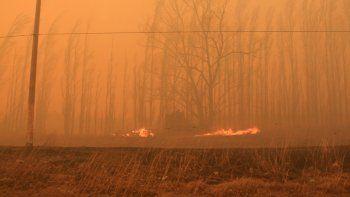 el fuego consumio mas de 21 mil hectareas por incendios forestales en rio negro