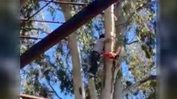 Peligrosa maniobra de un obrero sin tomar medidas de seguridad