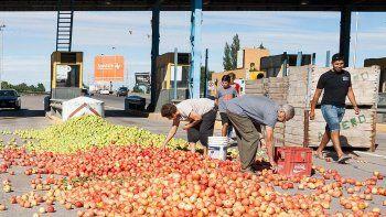 ¿Podrá la sidra evitar que cada año se tiren miles de kilos de fruta?