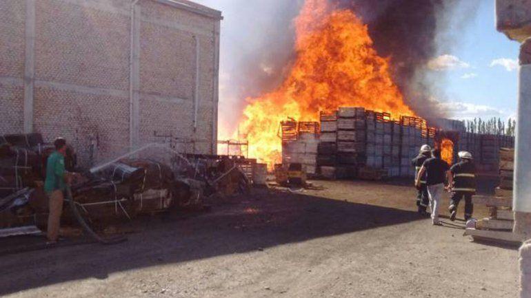 Pánico por un voraz incendio en el predio de un galpón de empaque