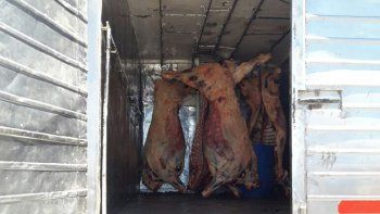 Decomisan más de media tonelada de carne vacuna floja de papeles