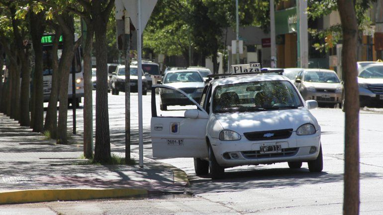 El Ejecutivo municipal impulsa una renovación muy seguida de las unidades.